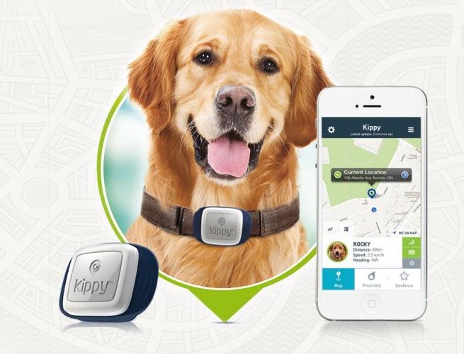 Kippy Pet Tracker